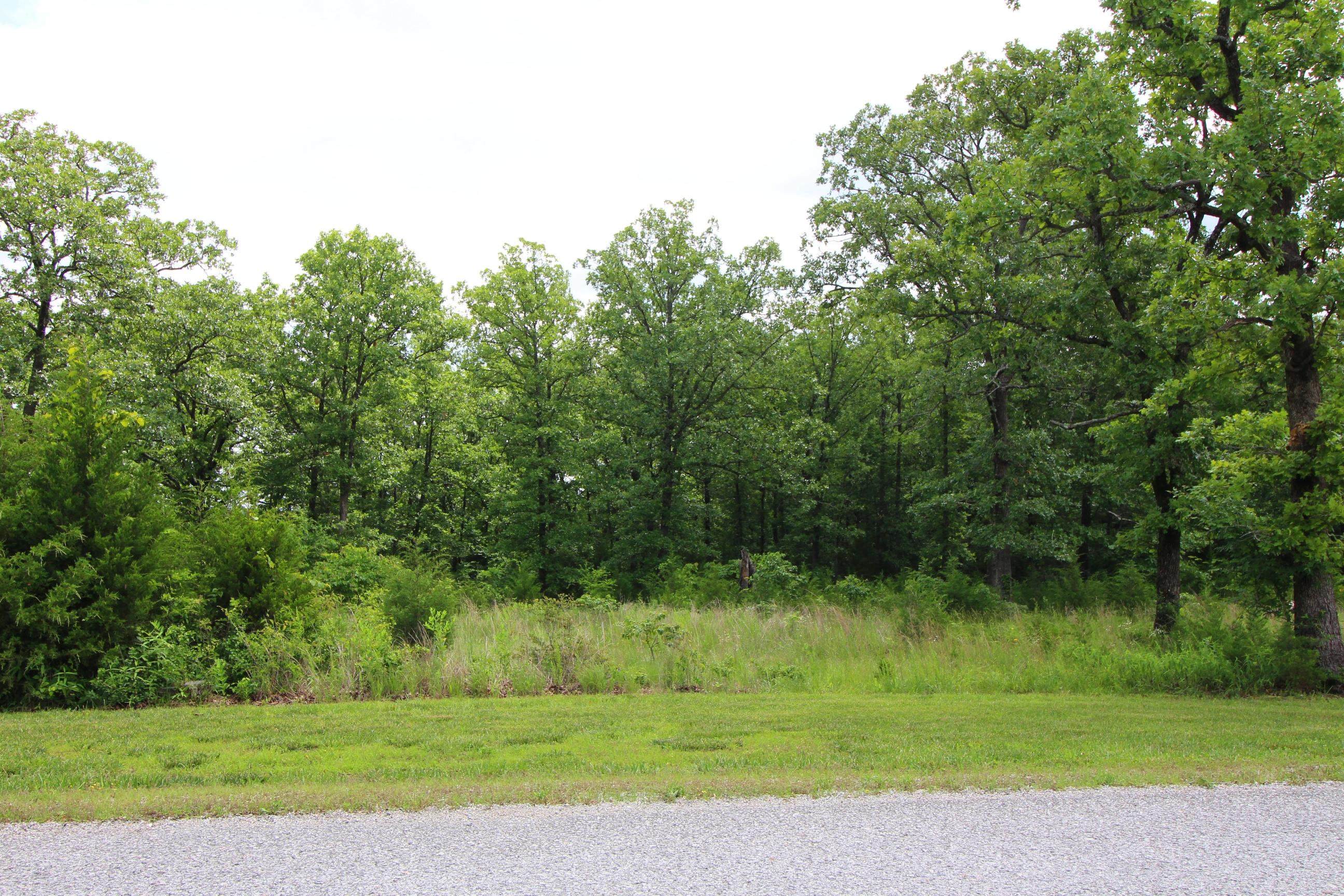 Lot 201 Forest Lake Drive Branson West, MO 65737