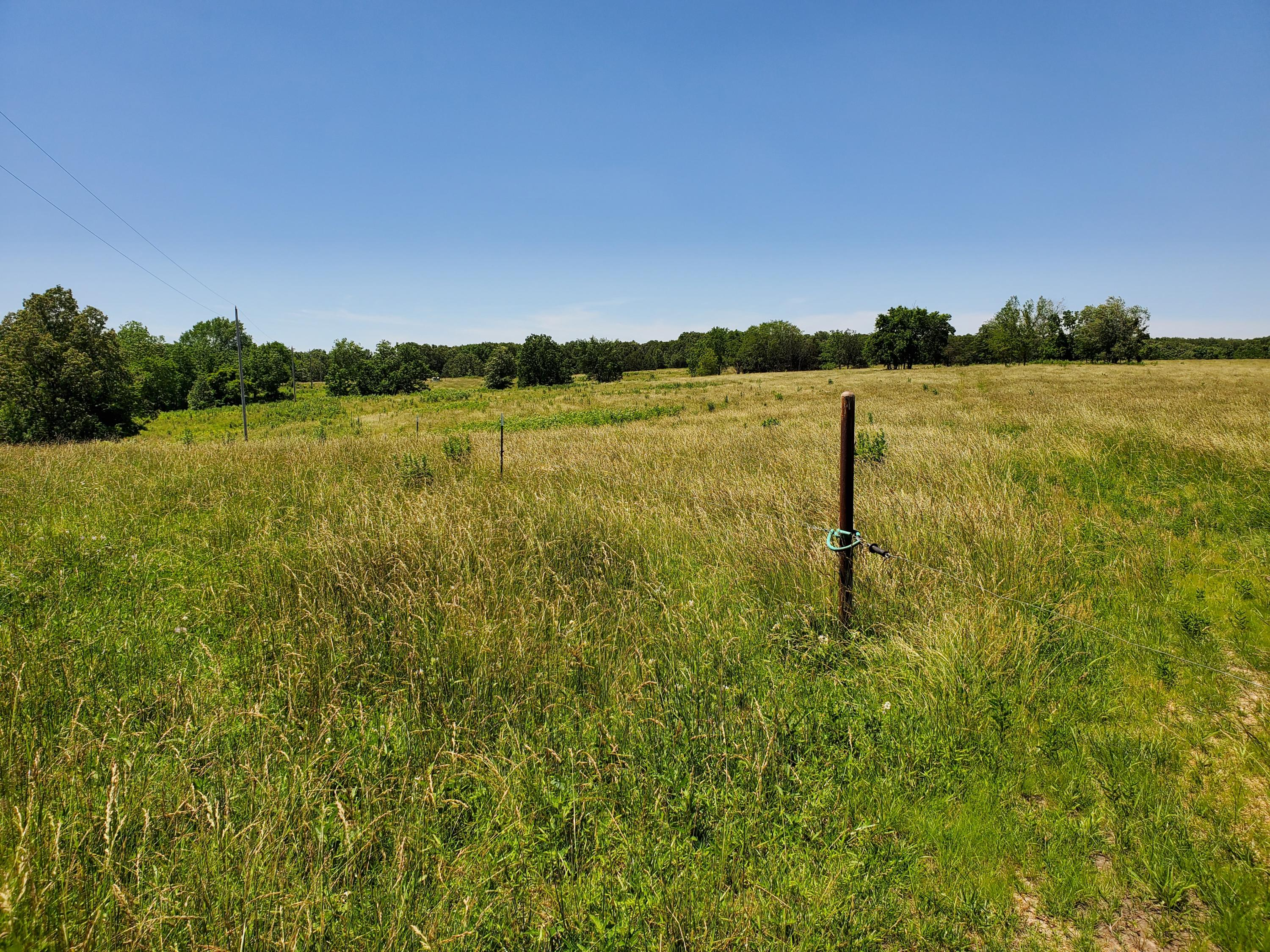 Tbd Little Vine Road Grovespring, MO 65662
