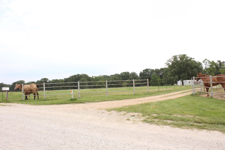 186 Harvest Drive Rogersville, MO 65742