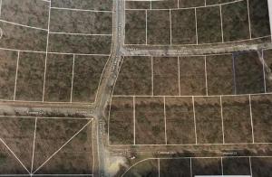 1107 Eagle Lane, Horseshoe Bend, AR 72512