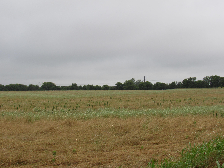 Tbd Farm Rd [Tract 3] Republic, MO 65738