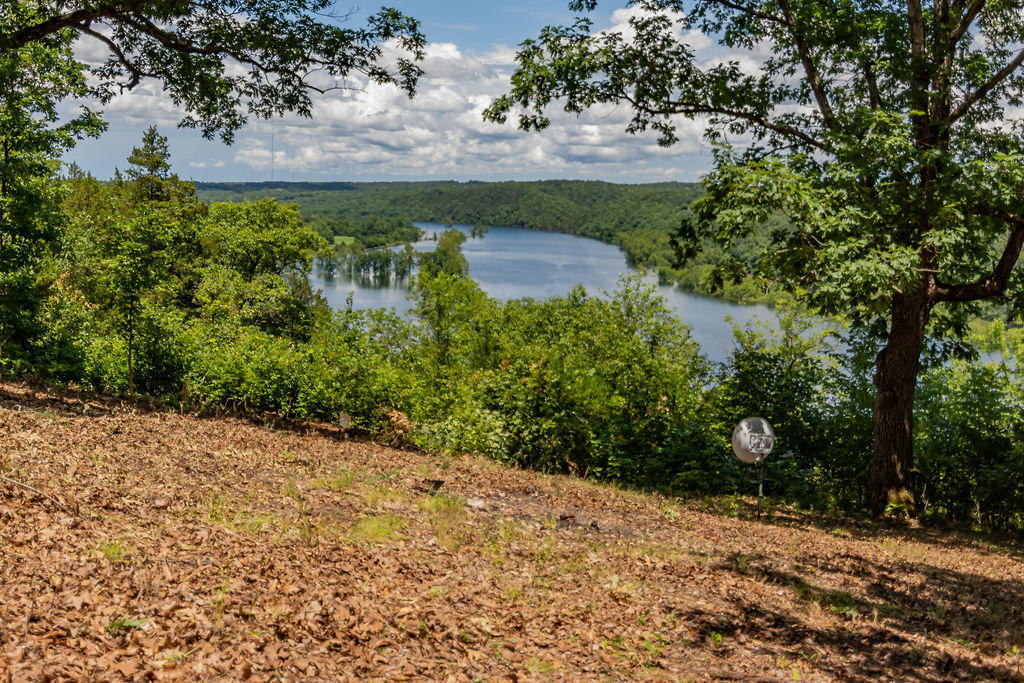 900 Long View Point Forsyth, MO 65653
