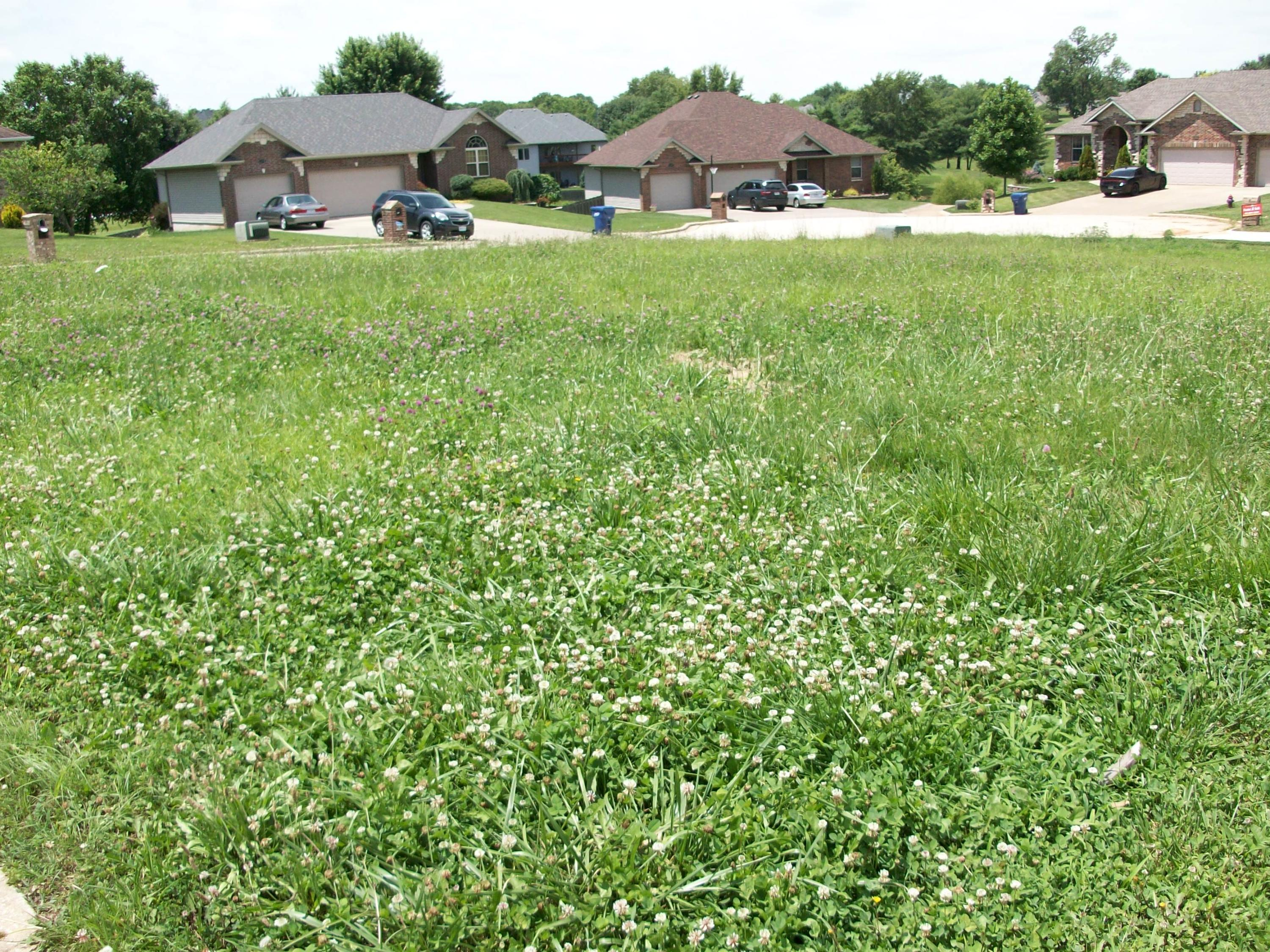 Lot 83 Nightingale Rogersville, MO 65742