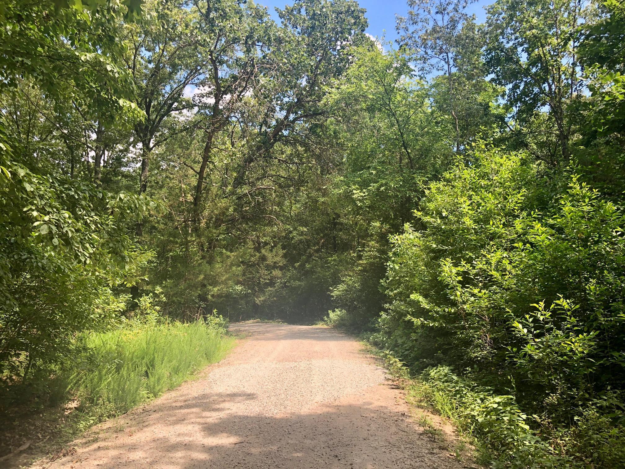 Lot 239.01 Hummingbird Lane Golden, MO 65658