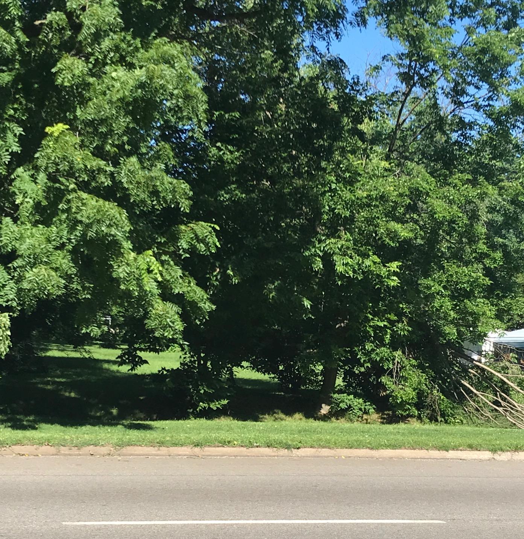 1215 North Kansas Expressway Springfield, MO 65802