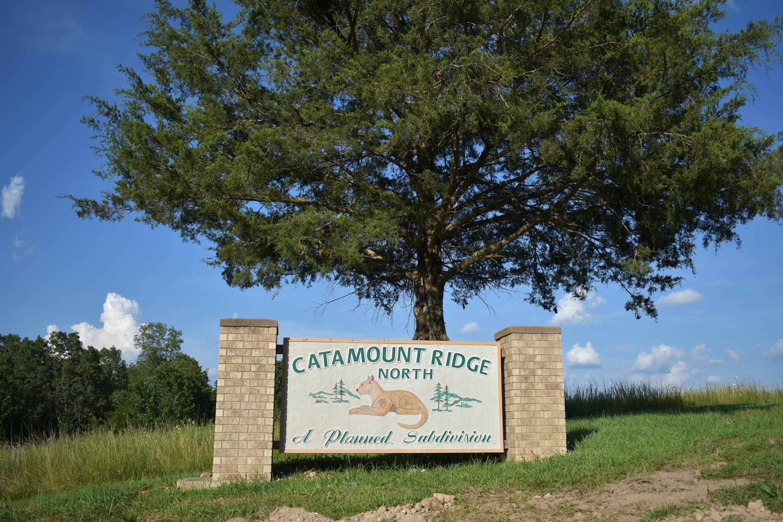 Lot 42 Catamount Ridge North Branson West, MO 65737