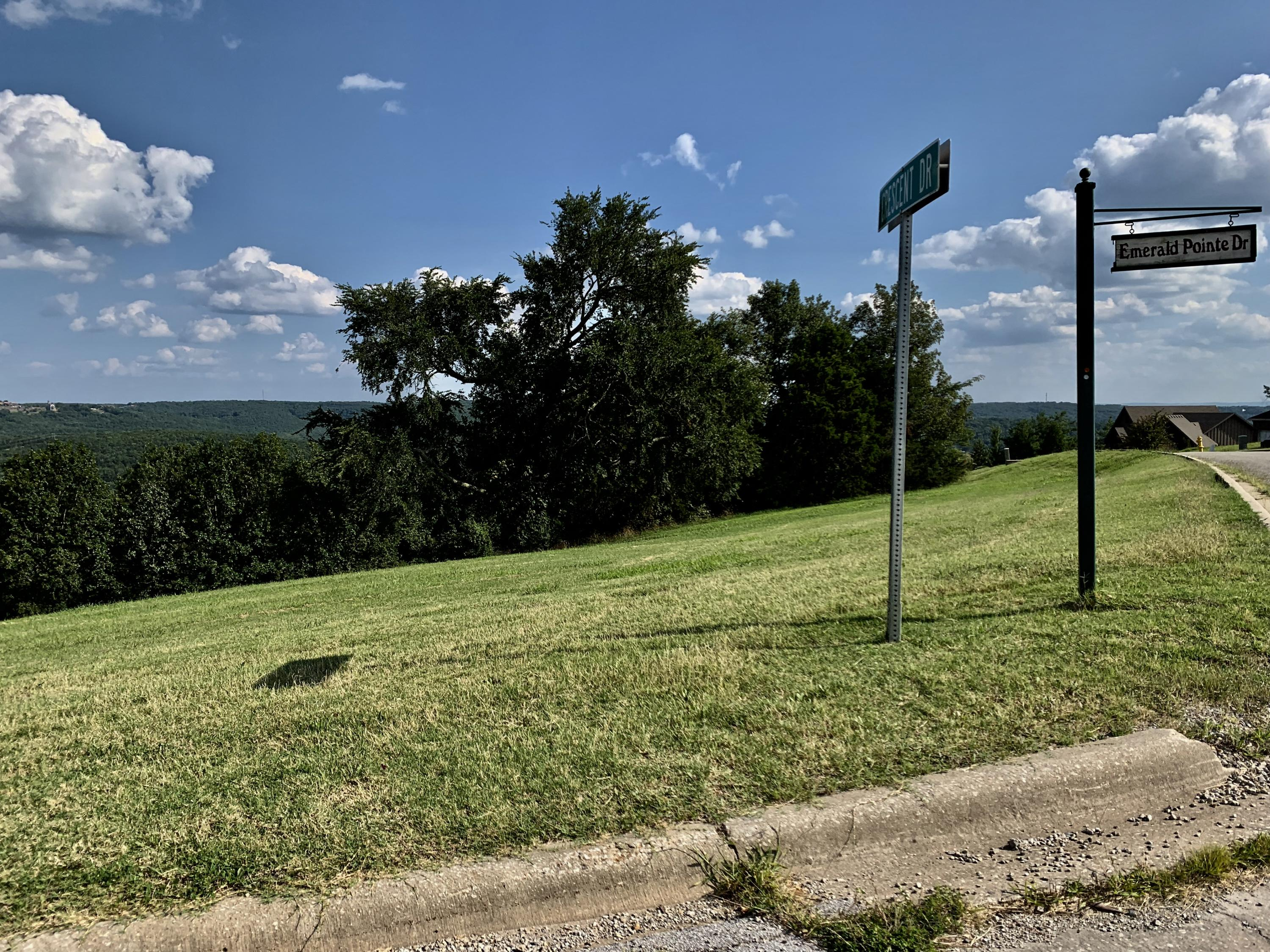Lot 243 Emerald Pointe Drive Hollister, MO 65672