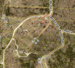 104 Turkey Tree Road, Galena, MO 65656
