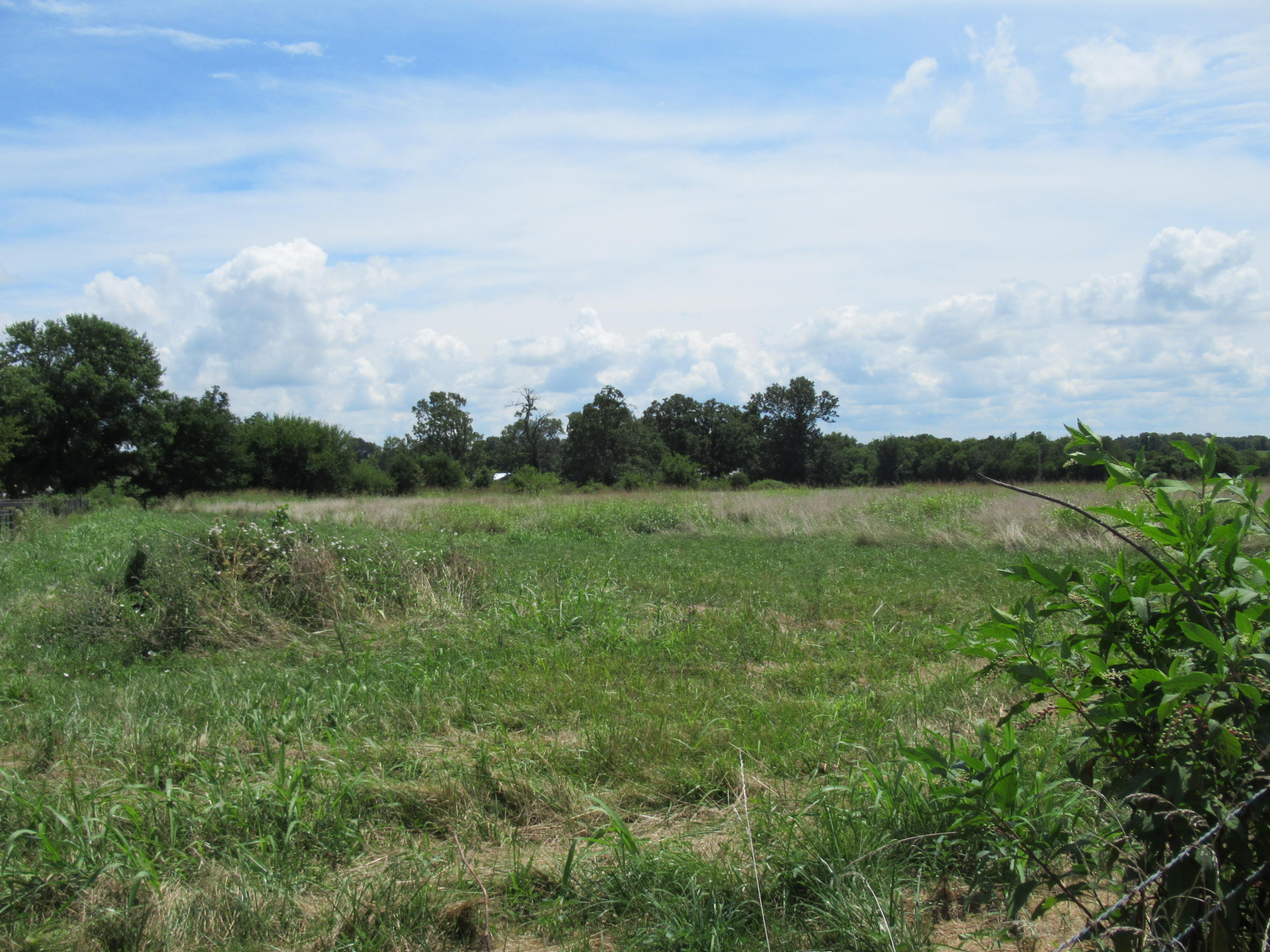 Tbd State Highway Rogersville, MO 65742