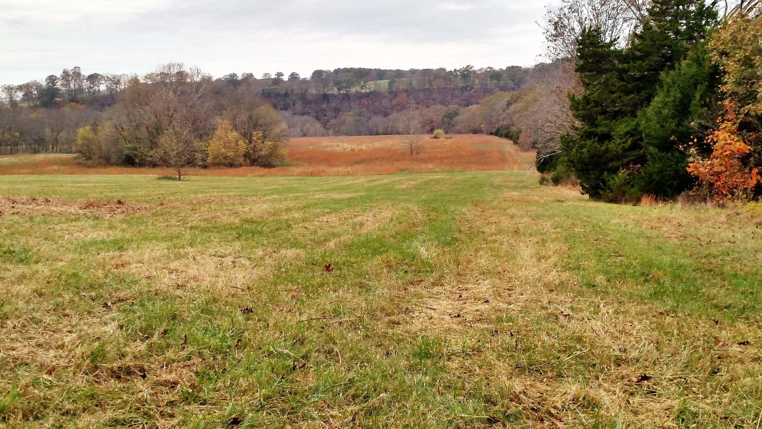 Lot # 41 Riverside Drive Galena, MO 65656