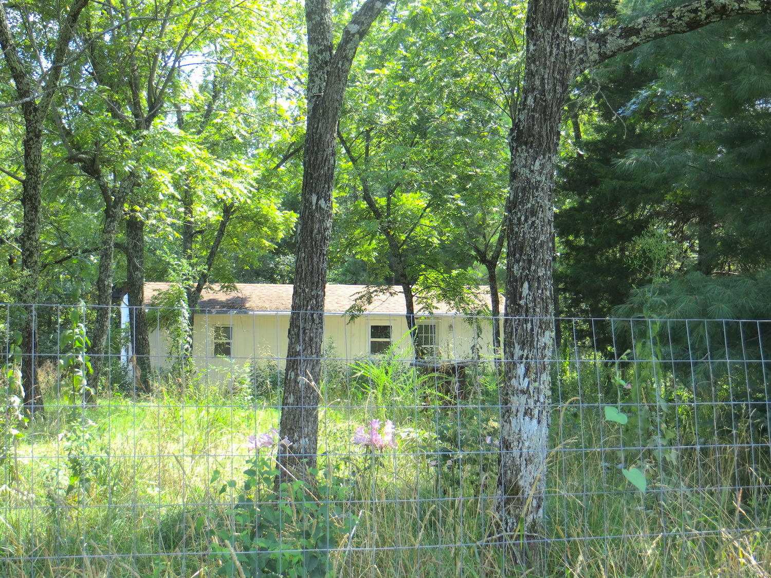 Private Road Off County Road Thayer, MO 65791
