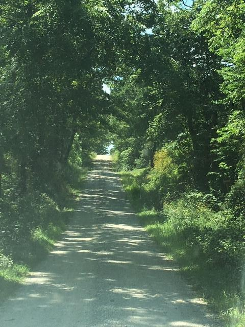 2581 Barton Lane Cabool, MO 65689