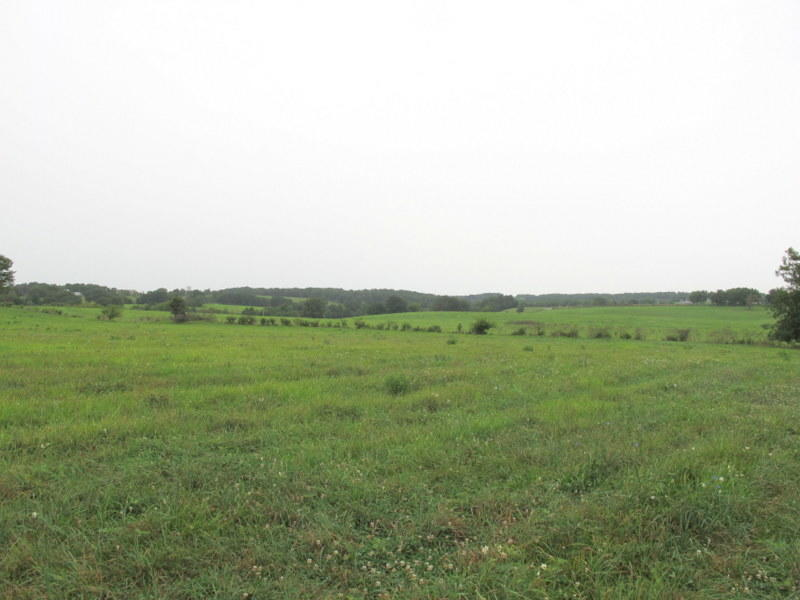 Tbd Kentucky Road Ozark, MO 65721