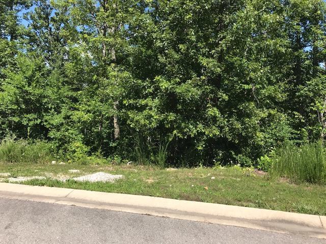132 Shinnecock Hills Drive #Lot 16 Branson, MO 65616