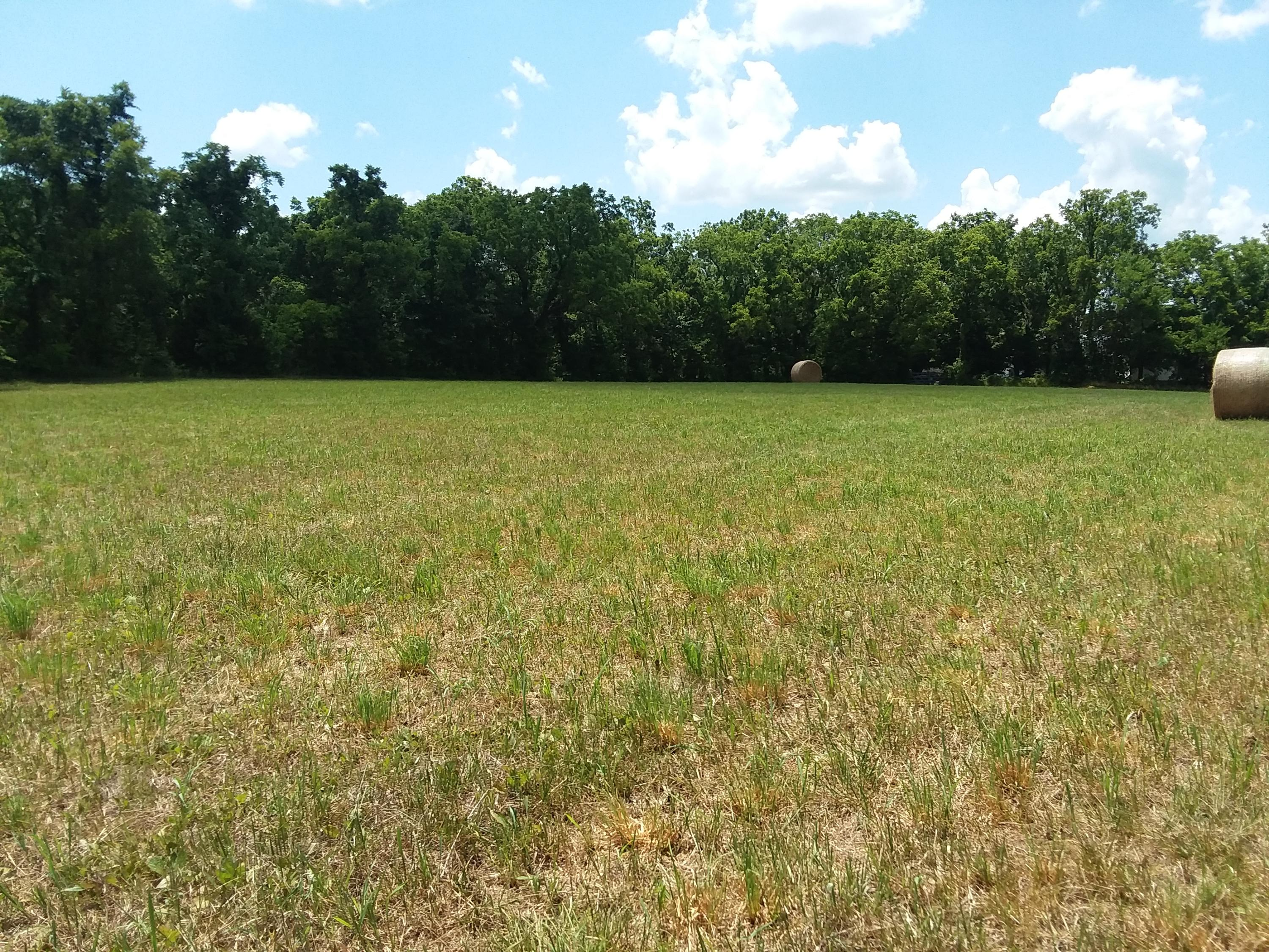 Tbd Schlessman Tract Road Anderson, MO 64831