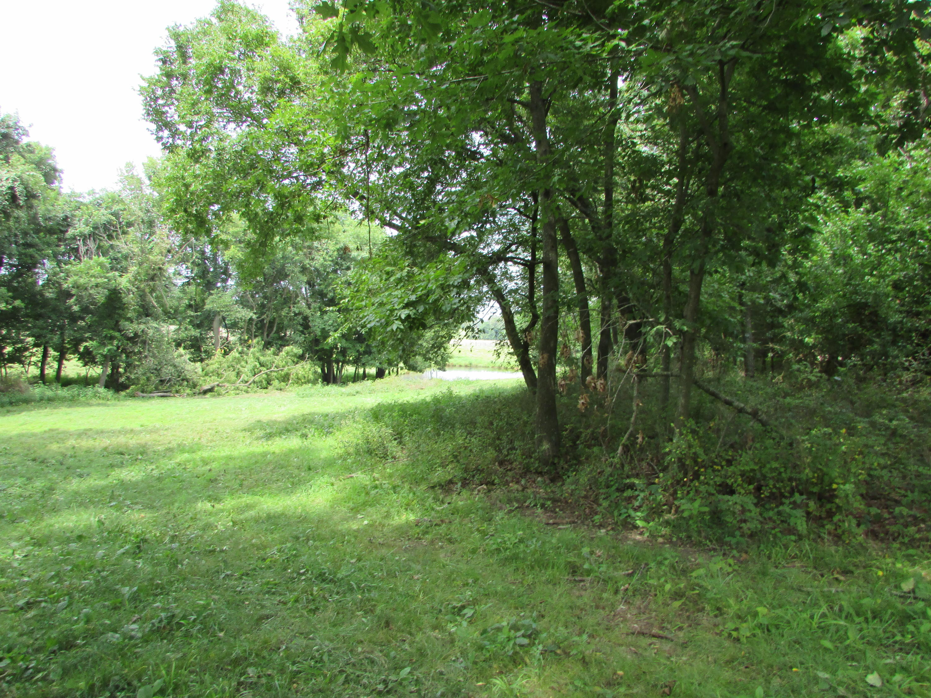 5364 County Road Sarcoxie, MO 64862
