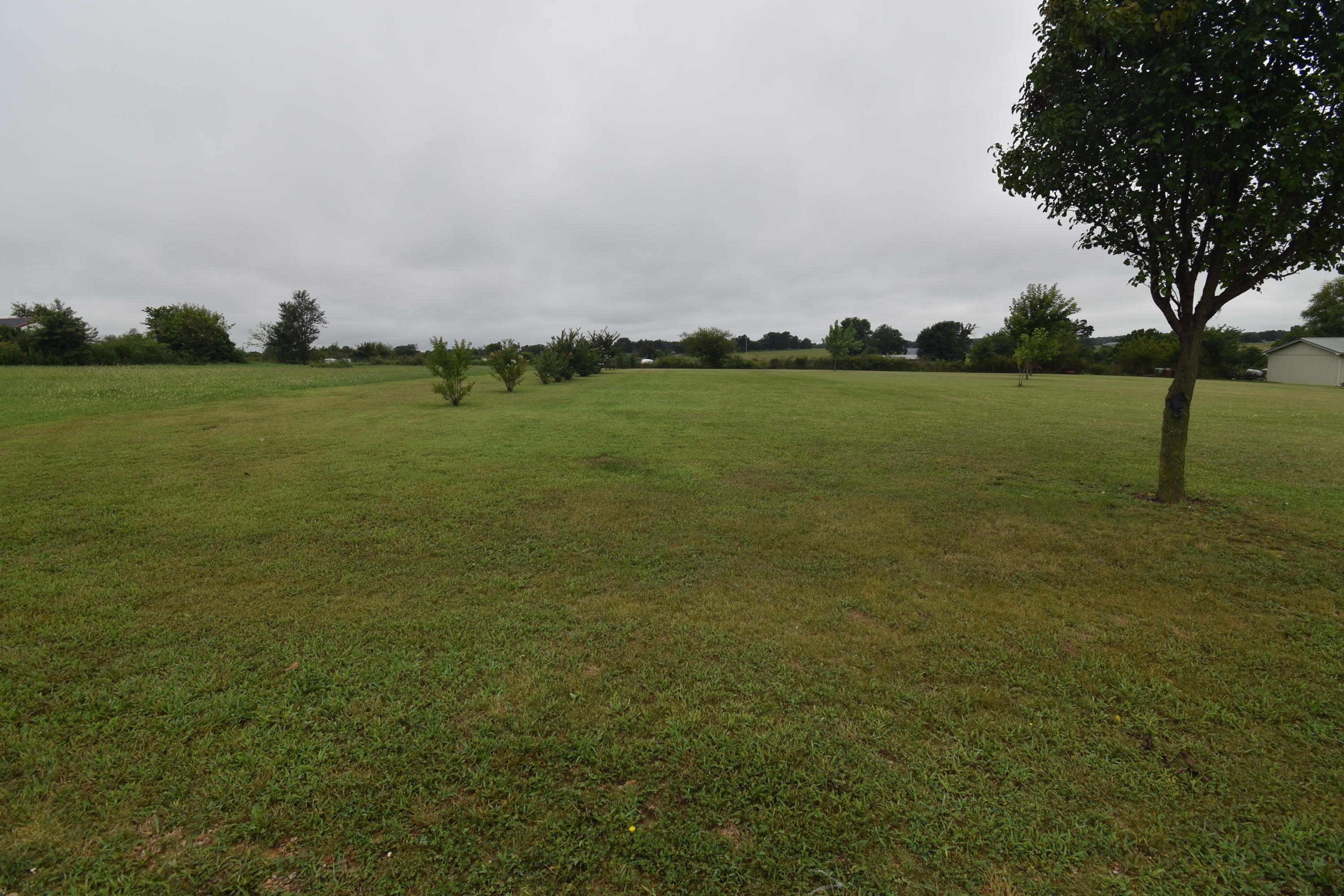Lot 3 Private Road Cassville, MO 65625