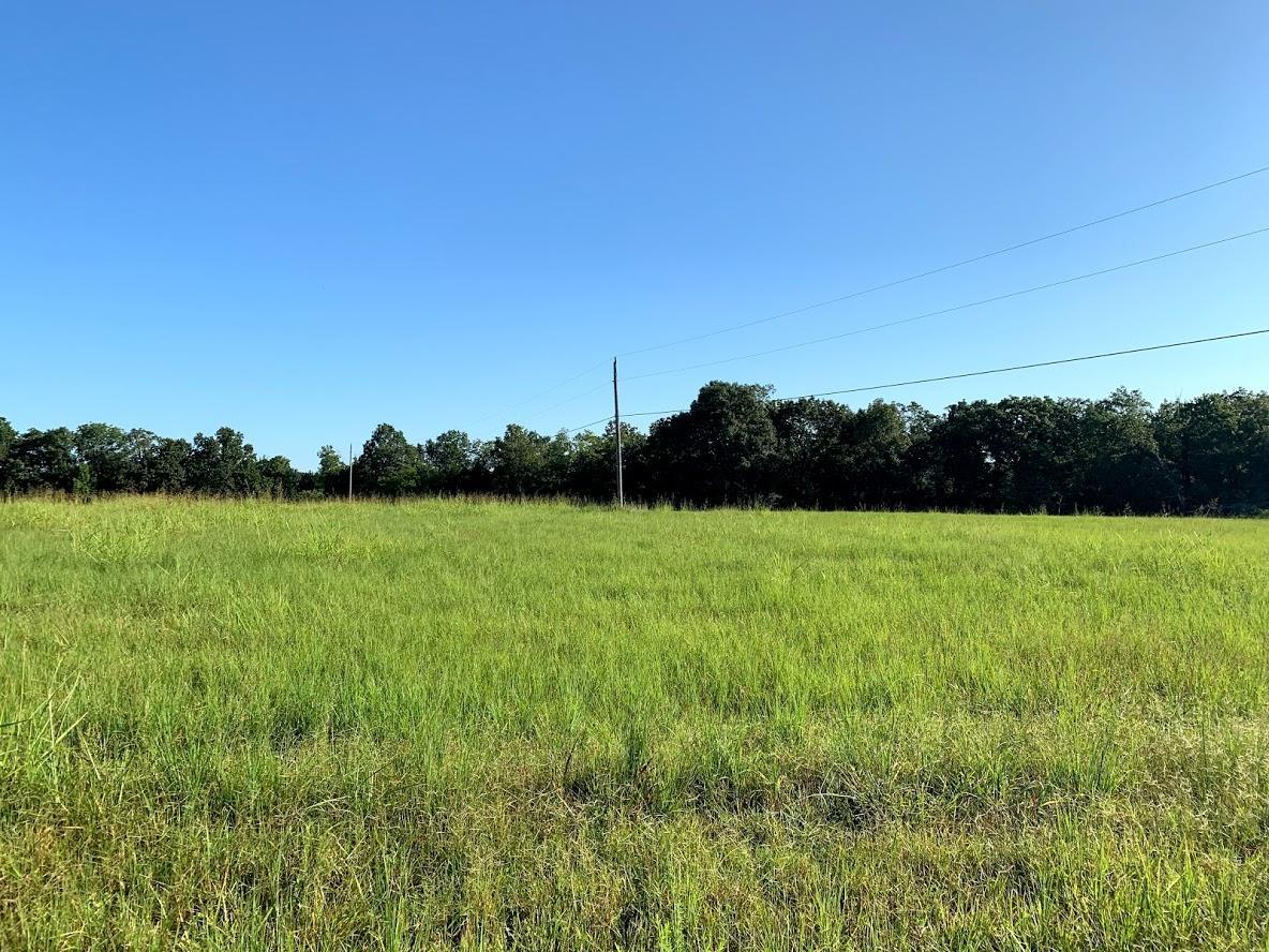 Tbd Buck Creek Drive Protem, MO 65733