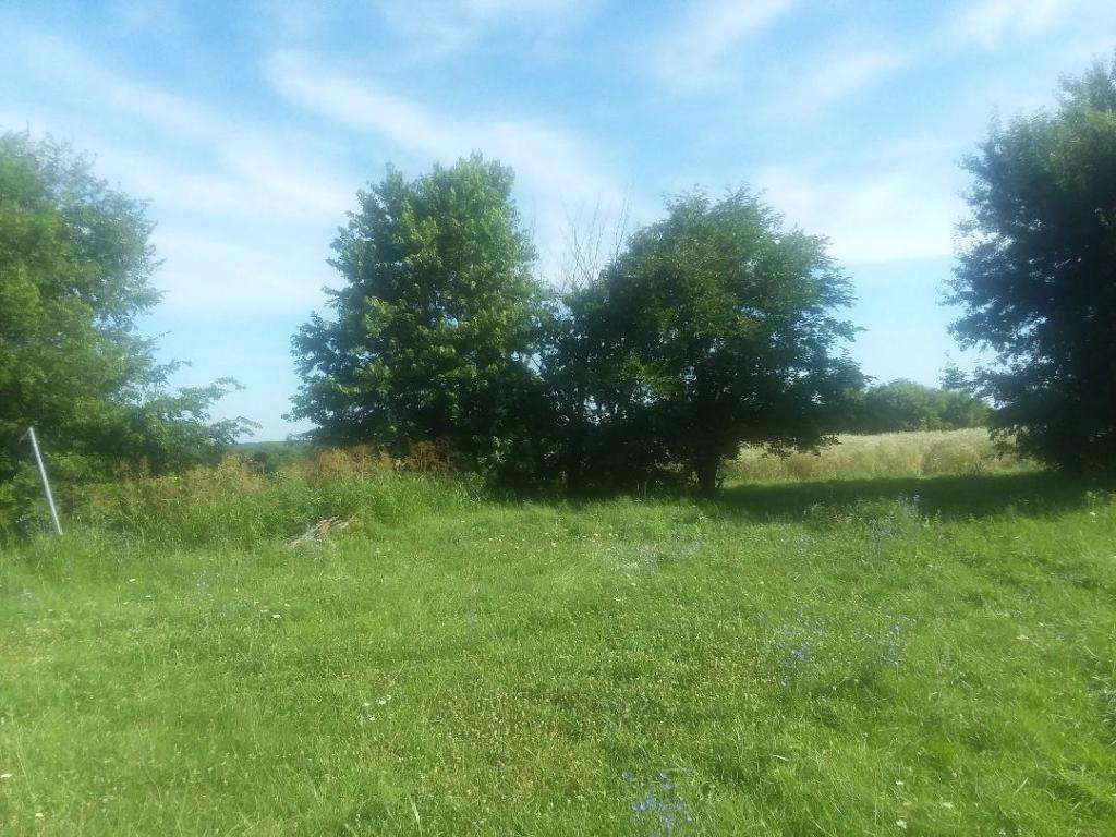 Farm Road Rogersville, MO 65742