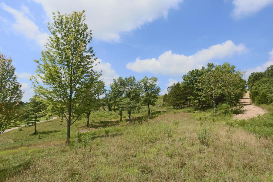Tbd Gobblers Knob Hollister, MO 65672