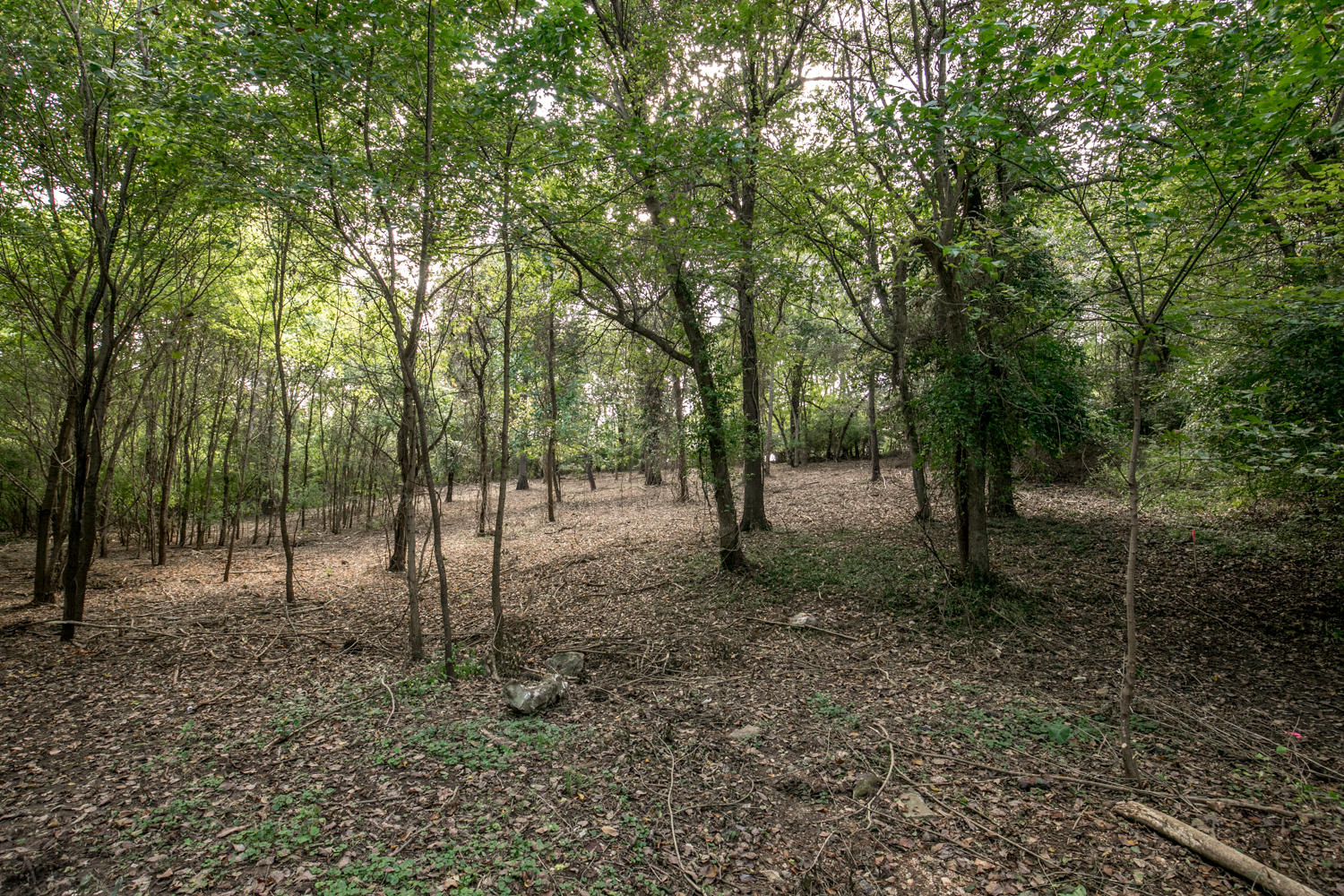 Lot 3 South Augusta Drive Springfield, MO 65809