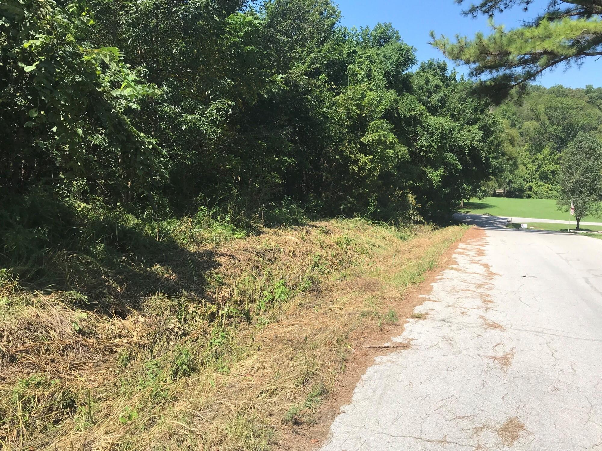 Lot 7/10 Troy St Hollister, MO 65672