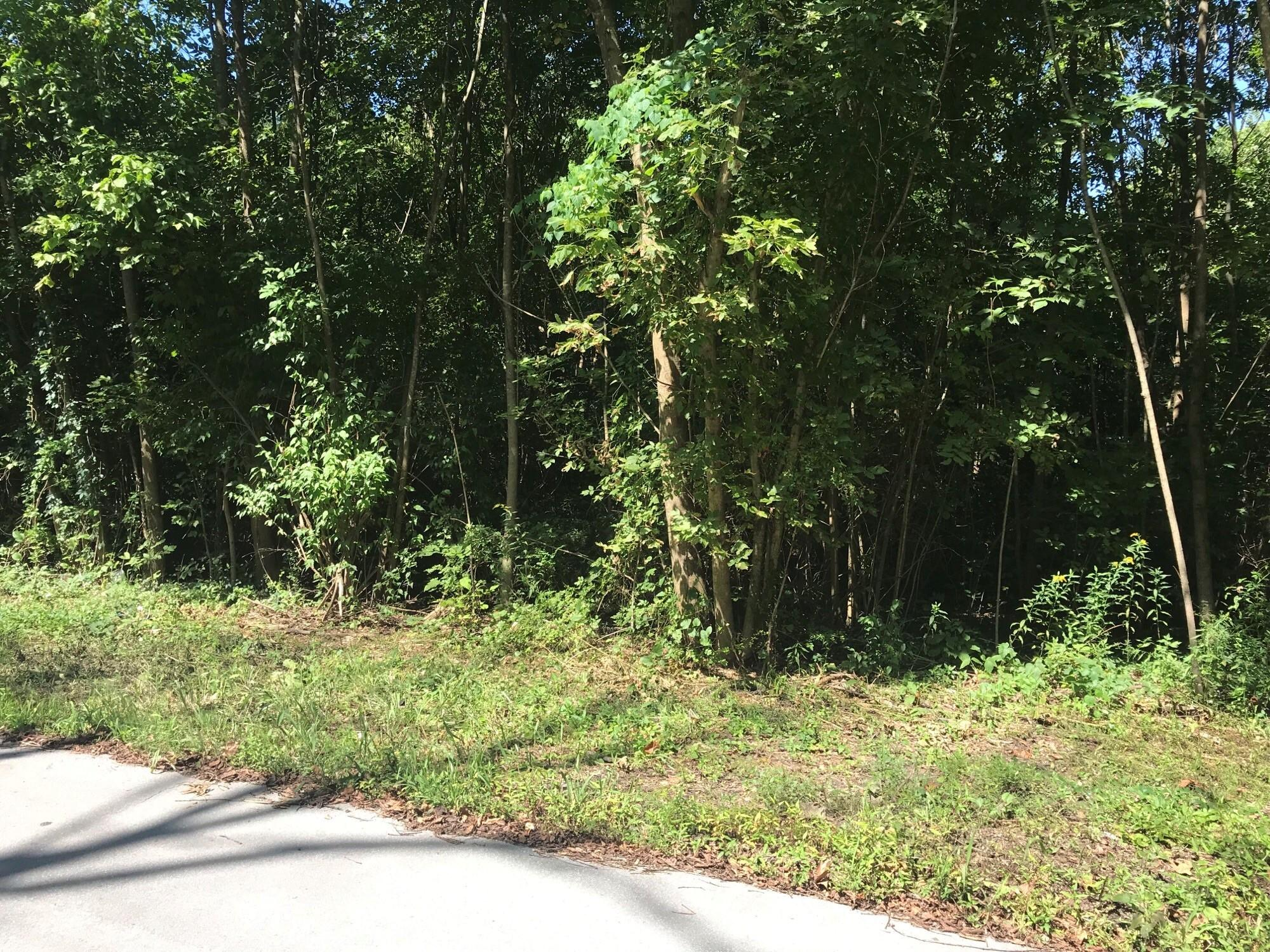 Lot 6/9 Troy St Hollister, MO 65672