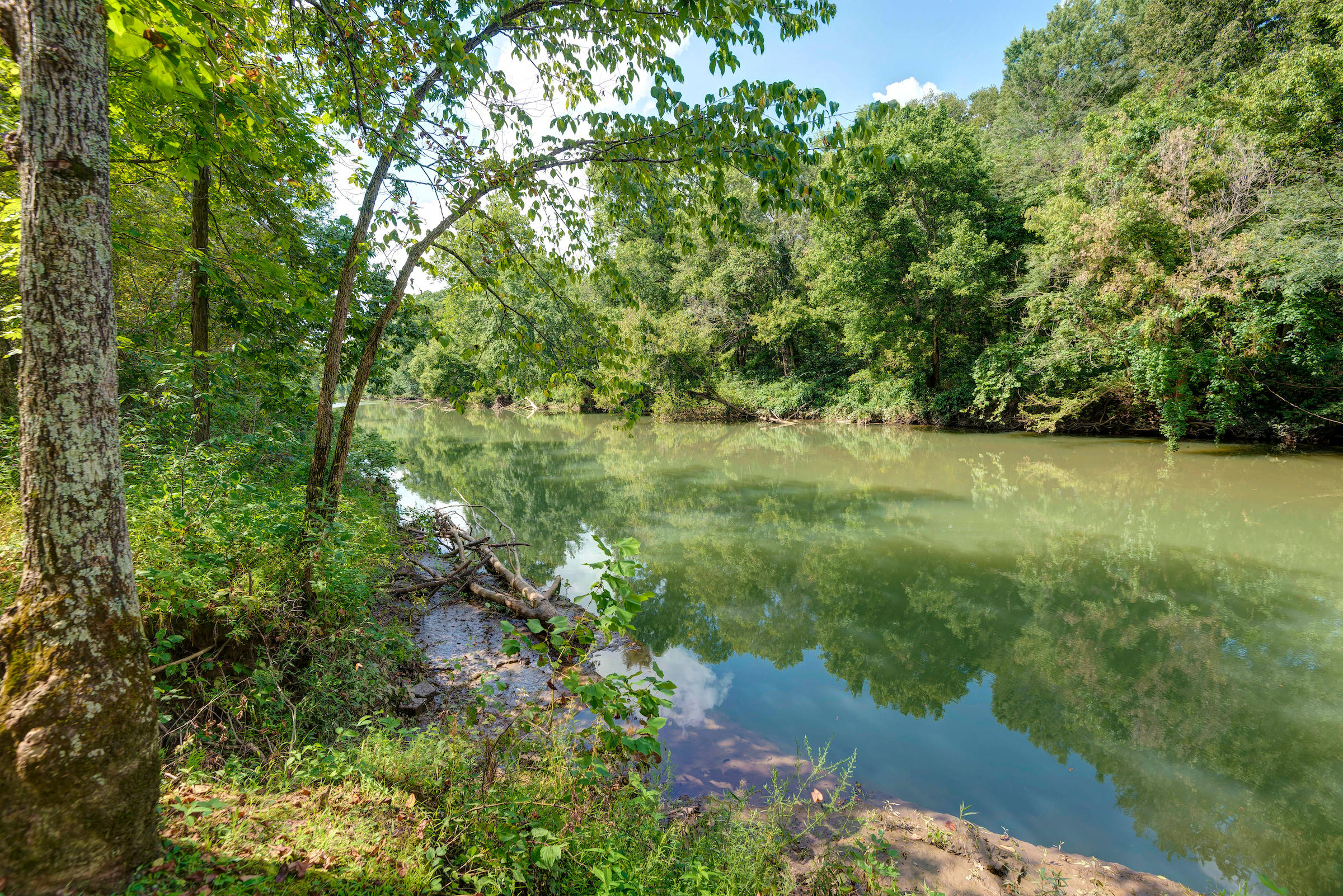 9033 East Riverview Drive Rogersville, MO 65742