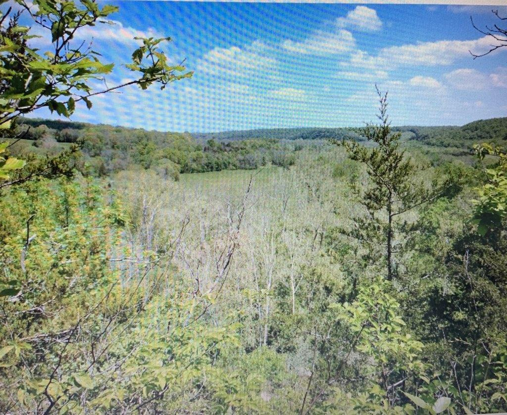 1246 Great View Road Highlandville, MO 65669