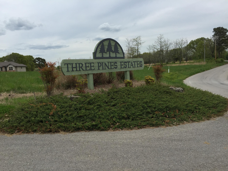 180 Three Pines Circle Reeds Spring, MO 65737