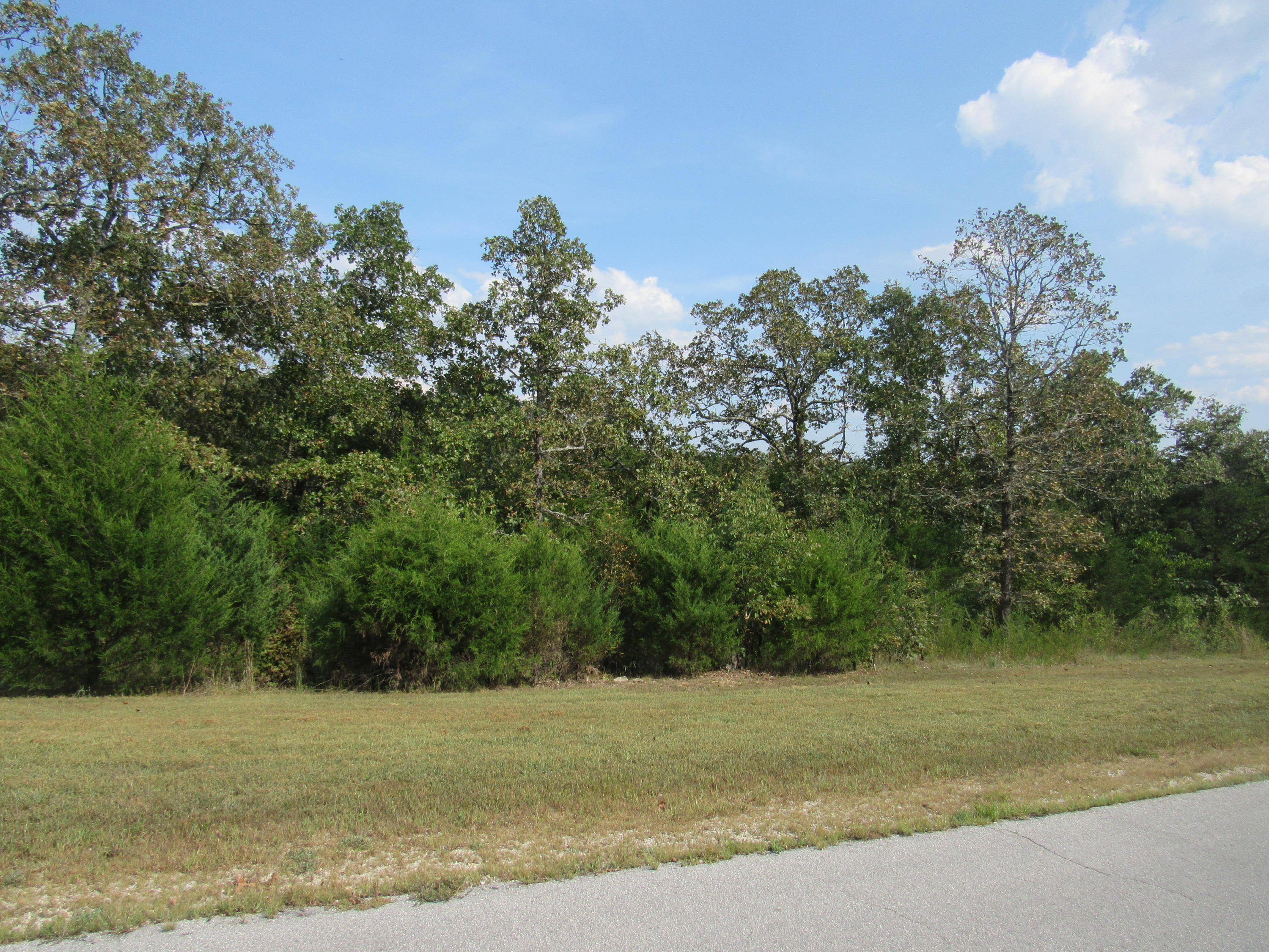 Lot 133 Forest Lake Branson West, MO 65737