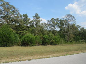 Lot 133 Forest Lake, Branson West, MO 65737