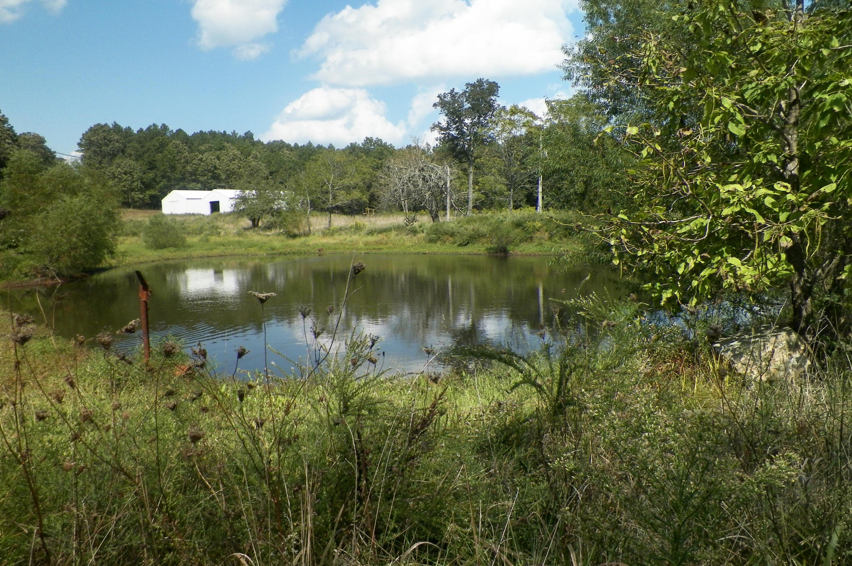 2370 County Road Winona, MO 65588