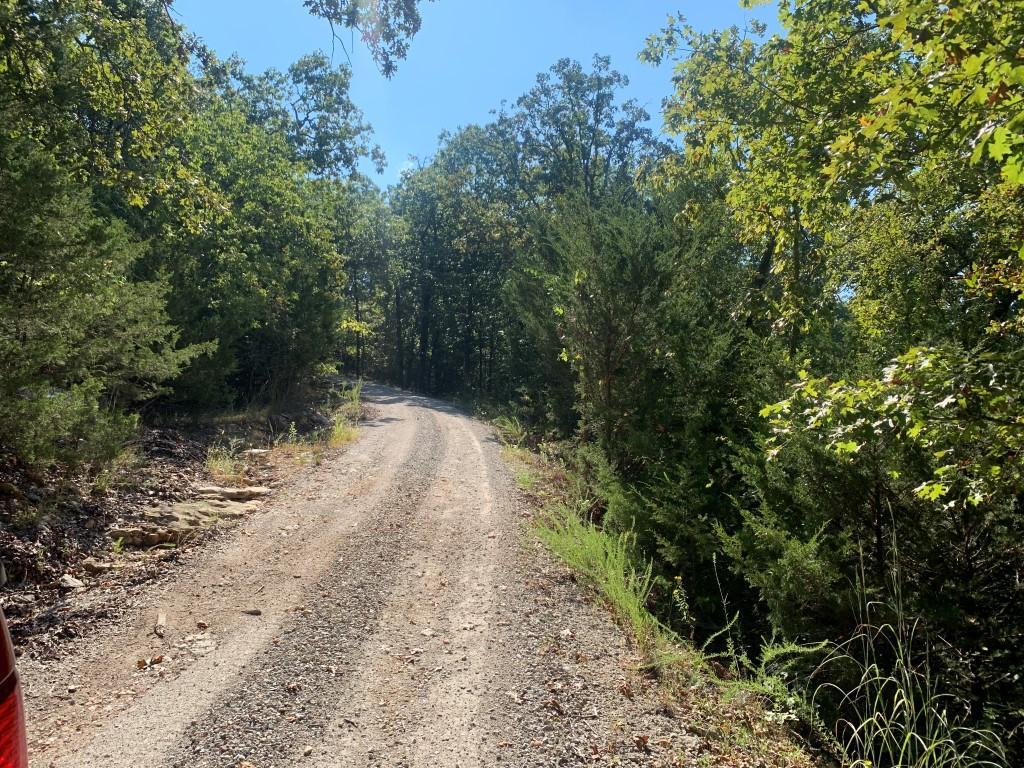 Tbd Cedar Mountian Road Galena, MO 65656