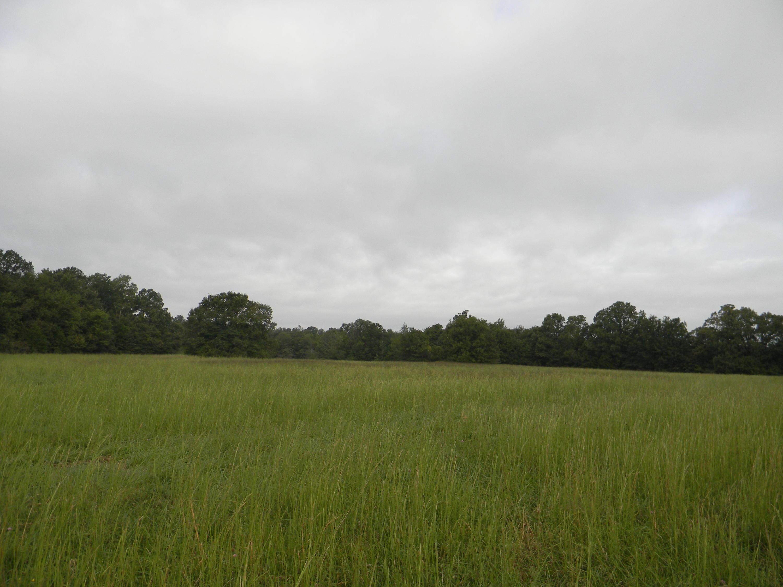 Lot 4 Farm Rd 94