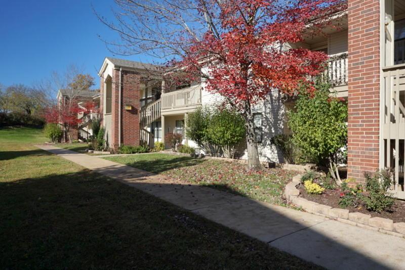 169 Highland Drive #2 Branson, MO 65616