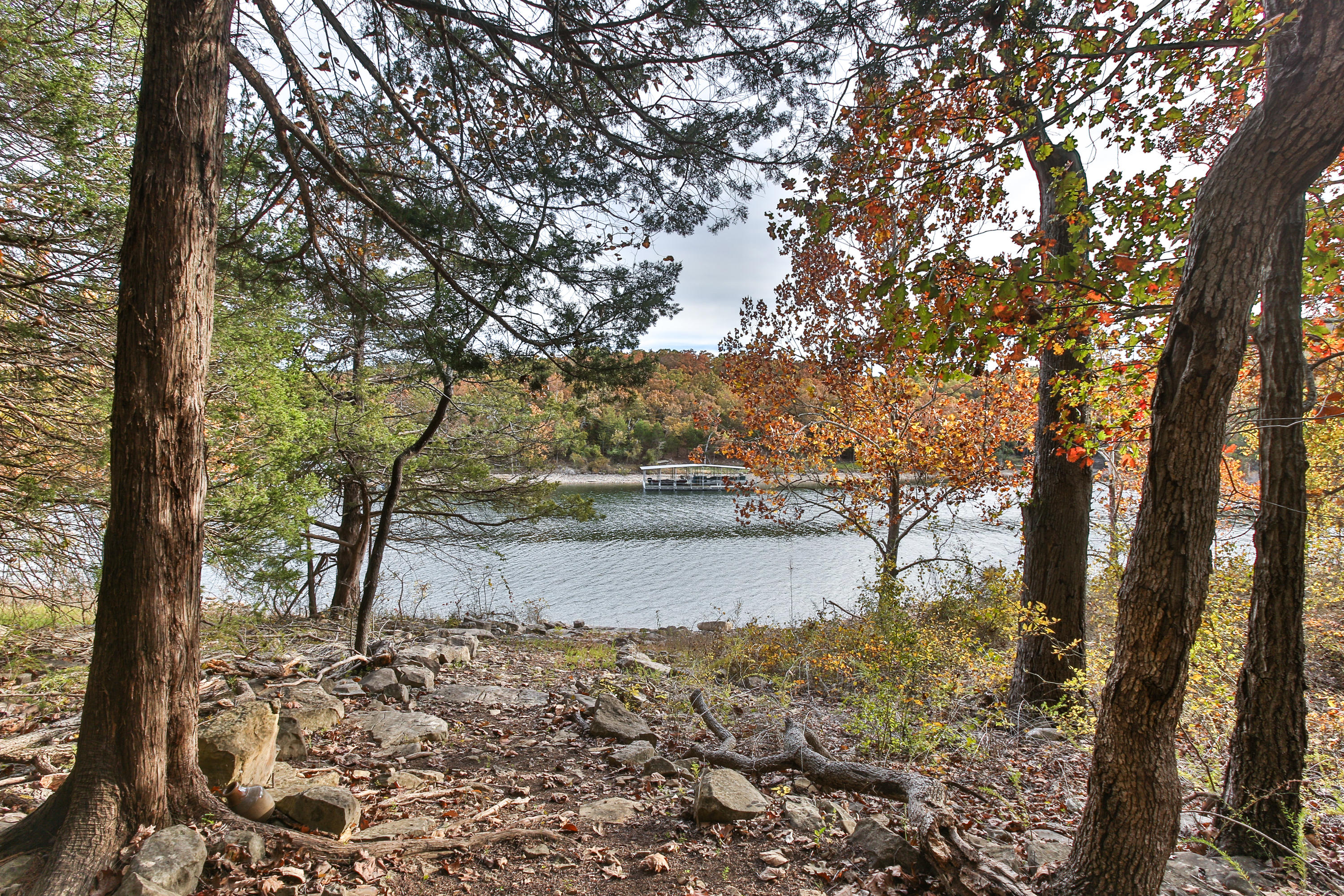 Lot 16 Clear Cove Landing Reeds Spring, MO 65737