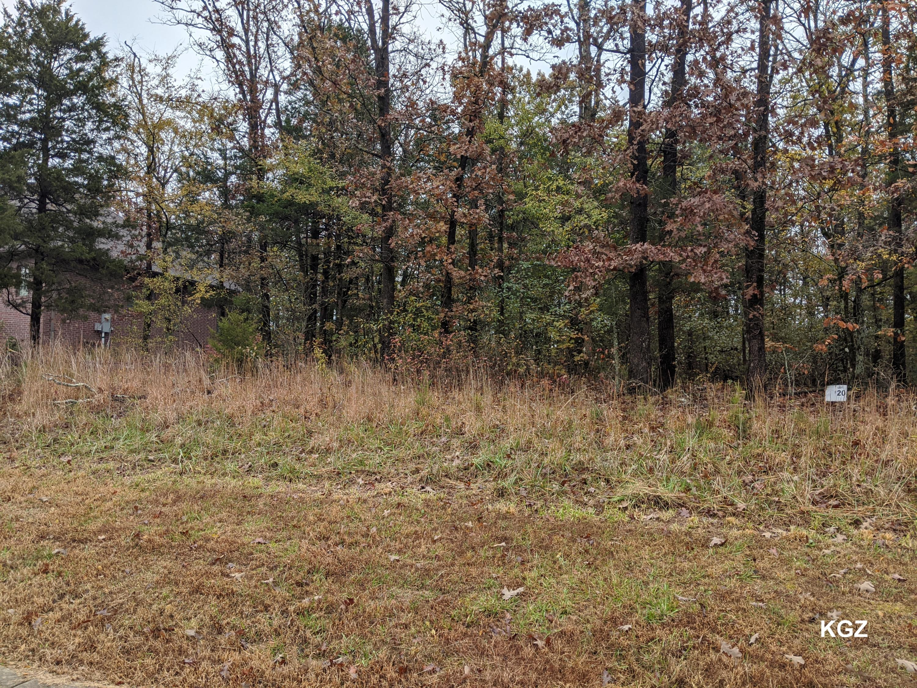 Lot 20 Beth Page Court Branson, MO 65616
