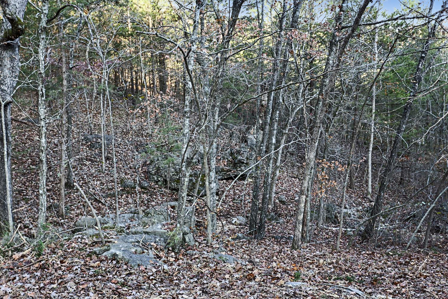 277 Whippoorwill Hollow Trail Kimberling City, MO 65686