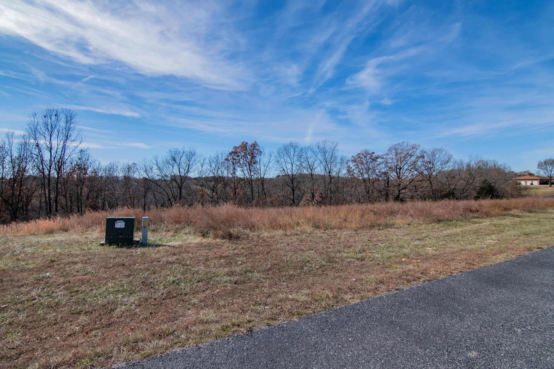 000 Hidden Springs Lane Reeds Spring, MO 65737