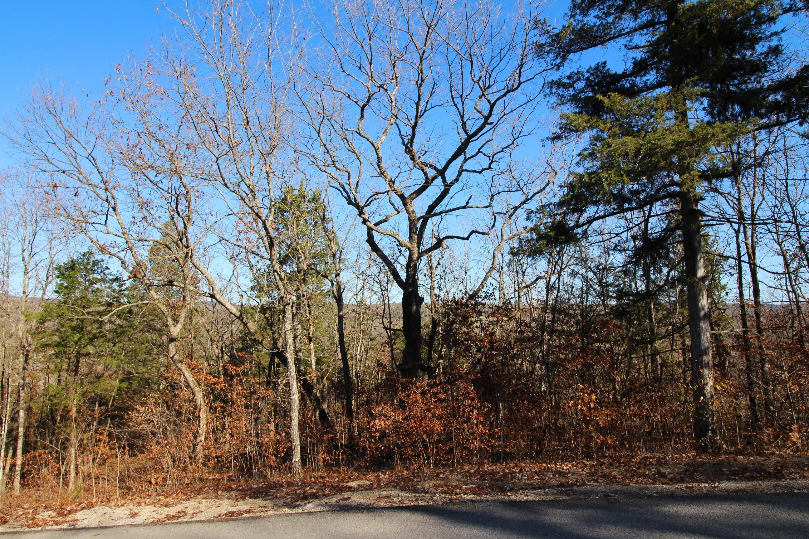 Lot 2 Silvercliff Way Branson West, MO 65737