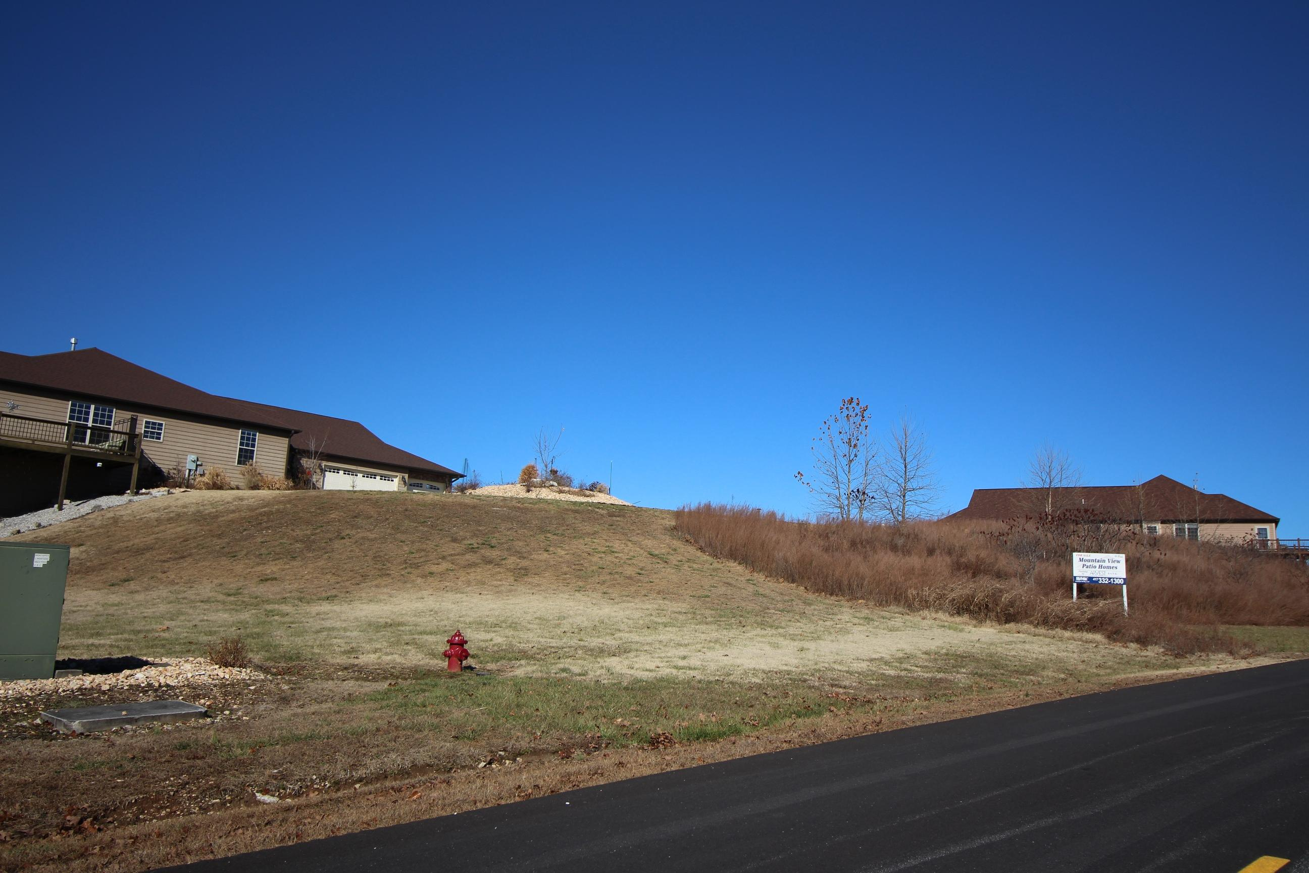 Lot 21,22 Mountain View Reeds Spring, MO 65737
