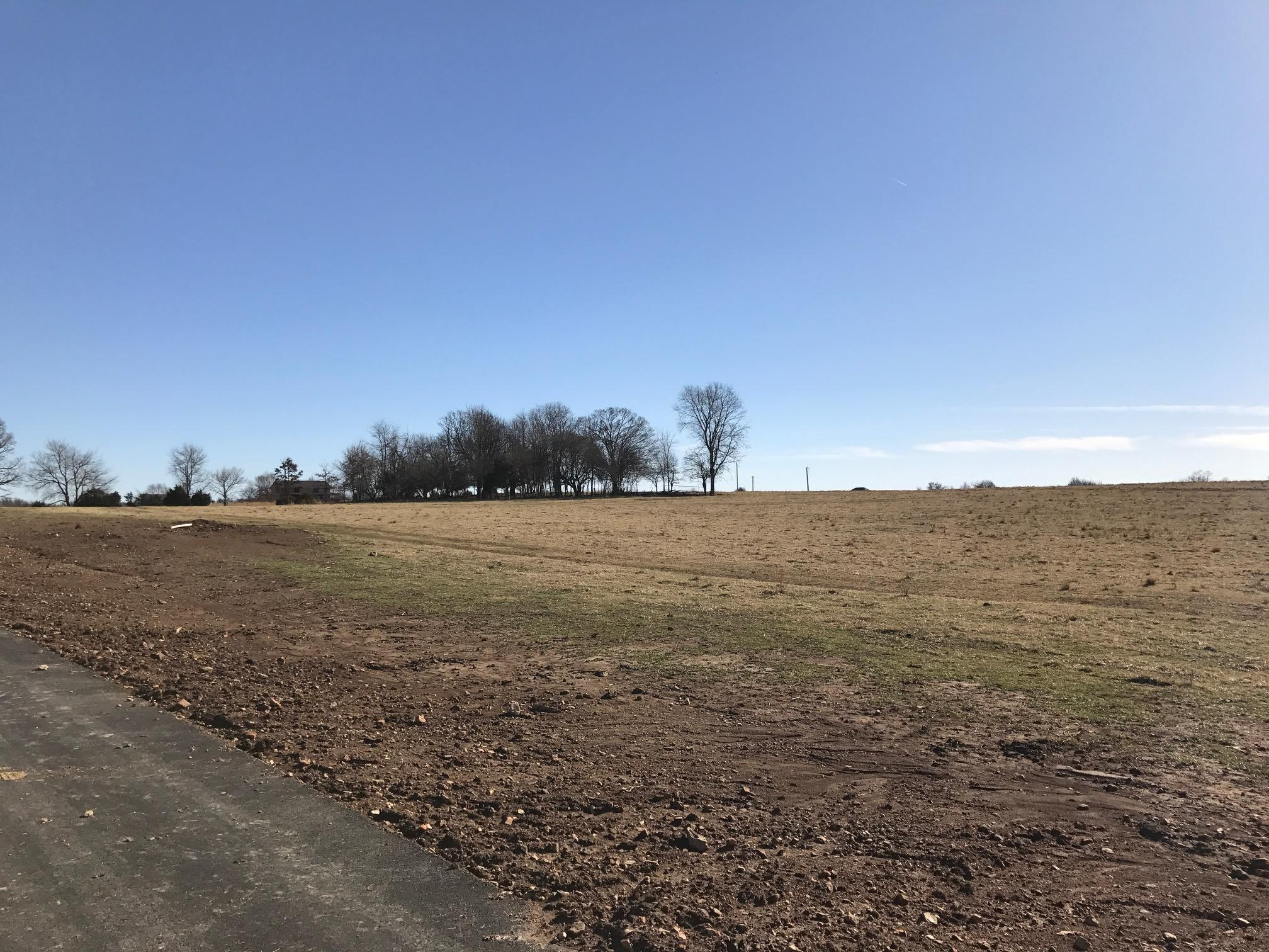 Lot 8 Clearview Court Ozark, MO 65721