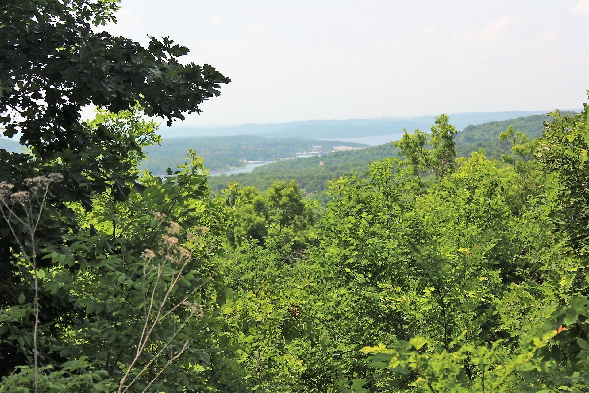 Lot 229 Bethany Lane Branson West, MO 65737