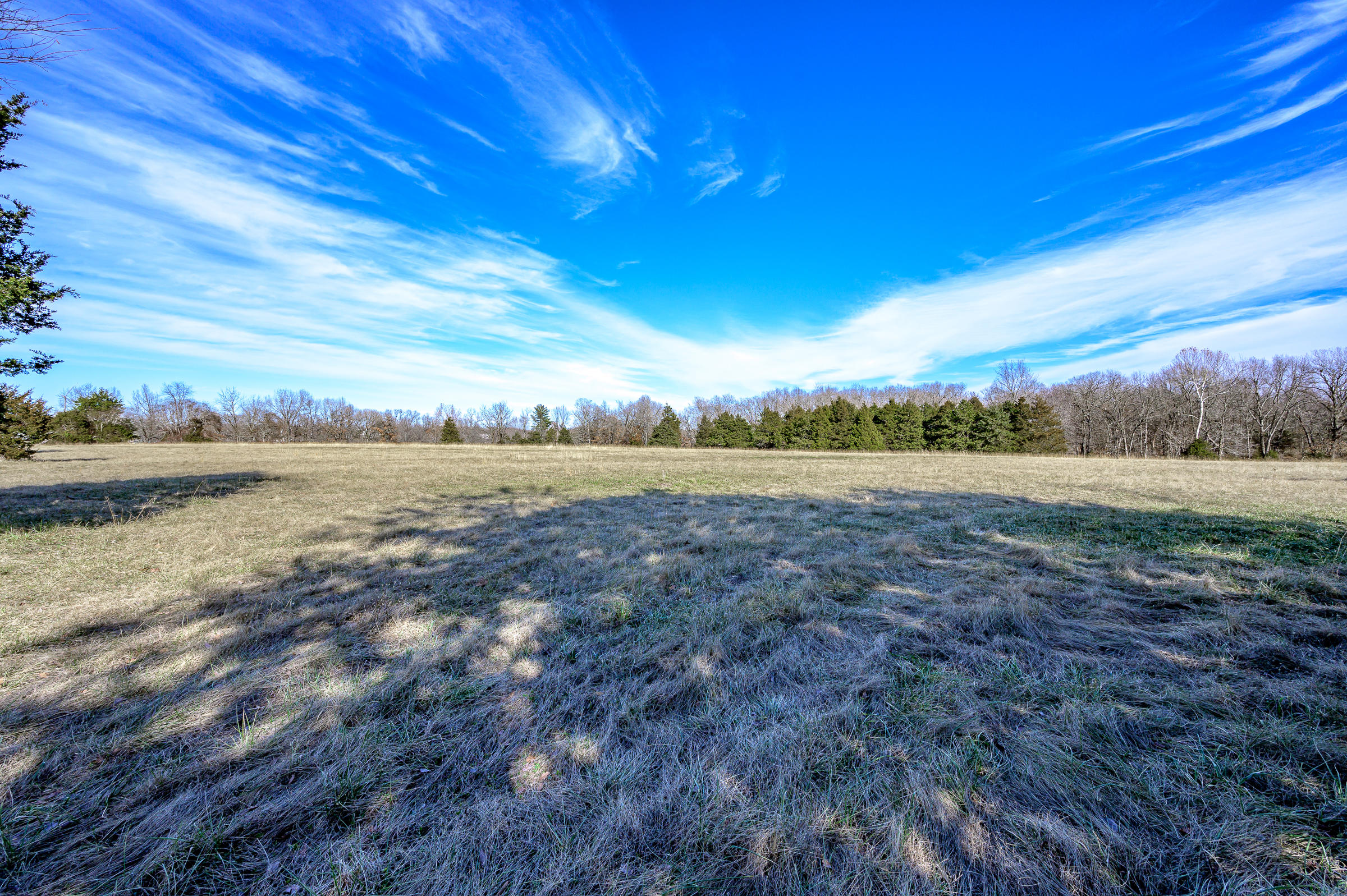 East Iris Meadow Lane Rogersville, MO 65742