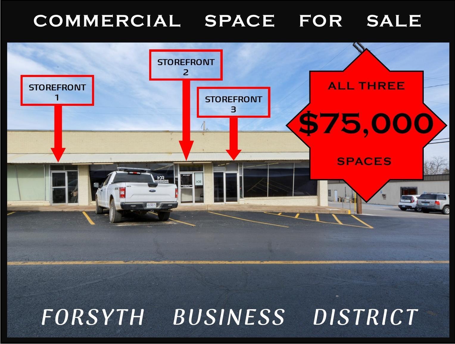 187 David Street Forsyth, MO 65653