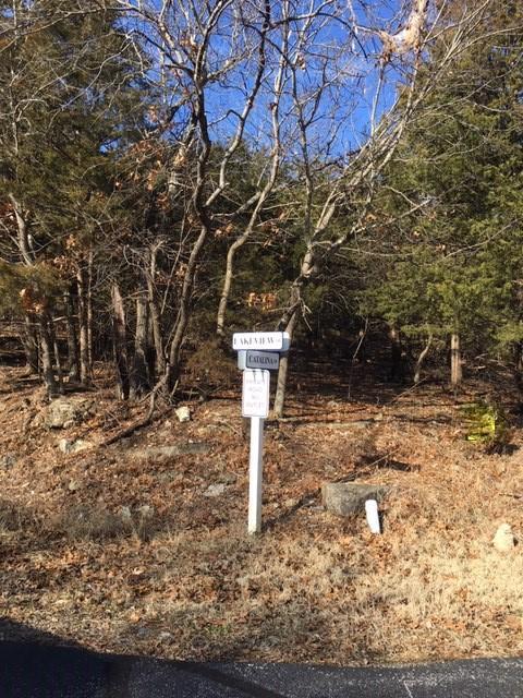 1300 Lakeview Drive Branson, MO 65616