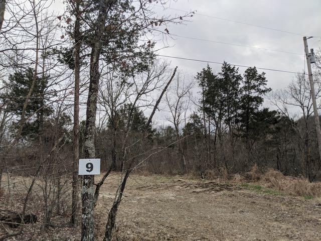 261 Shore Acre Dr. Powersite, MO 65731