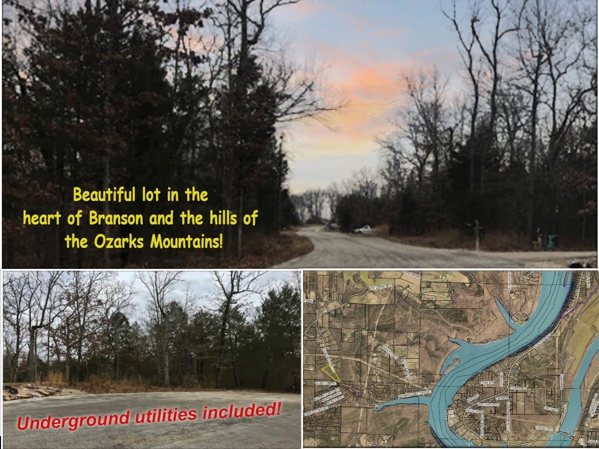 Lot 10 Huntington Drive Branson, MO 65616