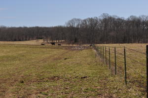 1788 County Road 1870, Willow Springs, MO 65793
